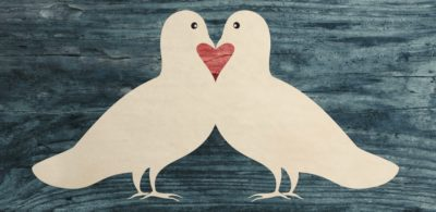 LOVE DOVES / personal emotional trainer