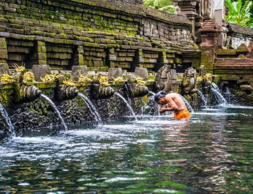 IMMORTAL SPRINGS in BALI